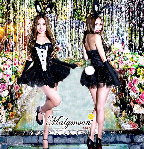 bunny girl 【1457】