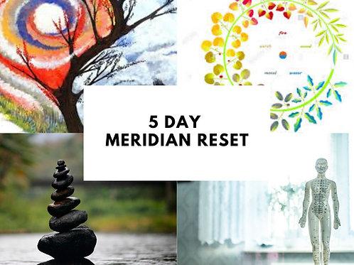 5-Day Meridian Reset Kit