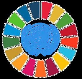 logo goals UN.png