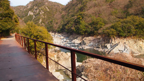 2 Hiking Trails for Beginners in Kansai