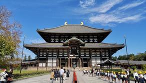 A Day in Nara (in 2020)