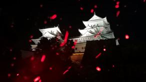 Himeji Ninja Night 2020