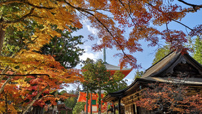 Koyasan, and Social Distancing When Traveling (or lack thereof)