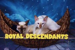 Royal Descendants Xia BELLISSIMA