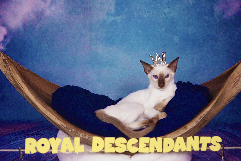 Royal Descendants Xia BENJAMIN