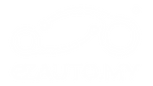 (r) ezauto vertical whiteout logo.png