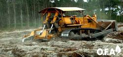 Ripagem com bulldozer