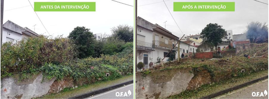 Antes&Depois_Outros1.jpg