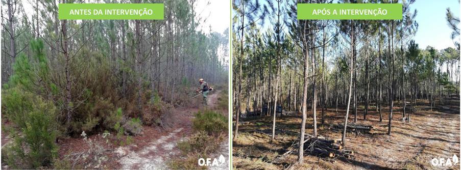 Antes & Após Intervenção