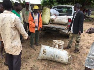 Bericht von der Fazenda Mosambik