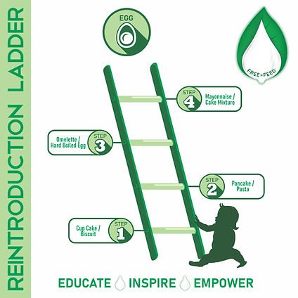reintroduction ladder-egg-dr trill-free