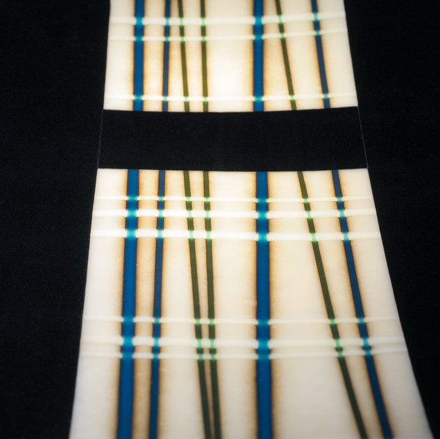 Detail of a fused plate with bamboo design