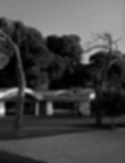 Mikel4b-n-web.jpg