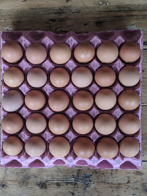 30 Organic free range eggs