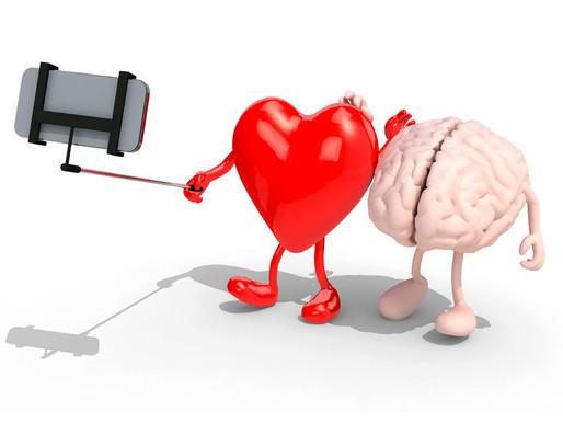 Herz oder Hirn – wie lernen wir? Dieser Blogartikel begeistert alle Sinne