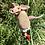 Thumbnail: fliegendes Schwein