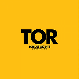 TOR-official-tor.png