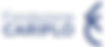 logo_fondazcariplo_partners.png