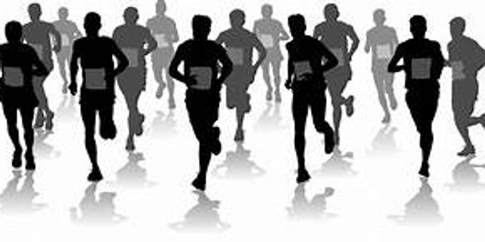 7th Annual Haralson County Rebel Run 5k