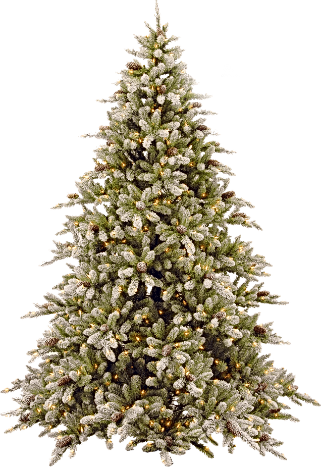 Christmas tree transparent.png