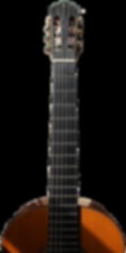 2015 Frederico Sheppard guitar, Douglas MacGregor