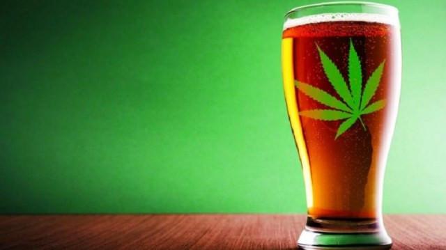 Vendas de cerveja no Canadá diminuíram com a legalização da maconha (Imagem: Internet)