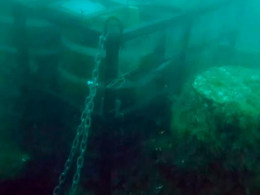 Ladrões roubam 600 litros de cerveja que estavam maturando no fundo do mar