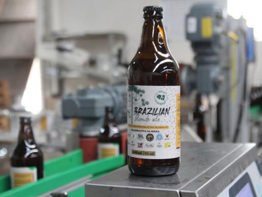 Ambev, Lohn Bier e microcervejarias catarinenses criam cerveja colaborativa com lúpulo nacional
