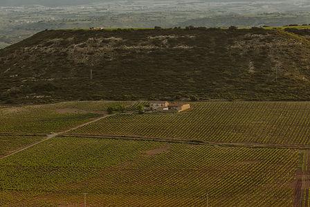vinovillota-rioja-vina-cerro-paisaje.jpg