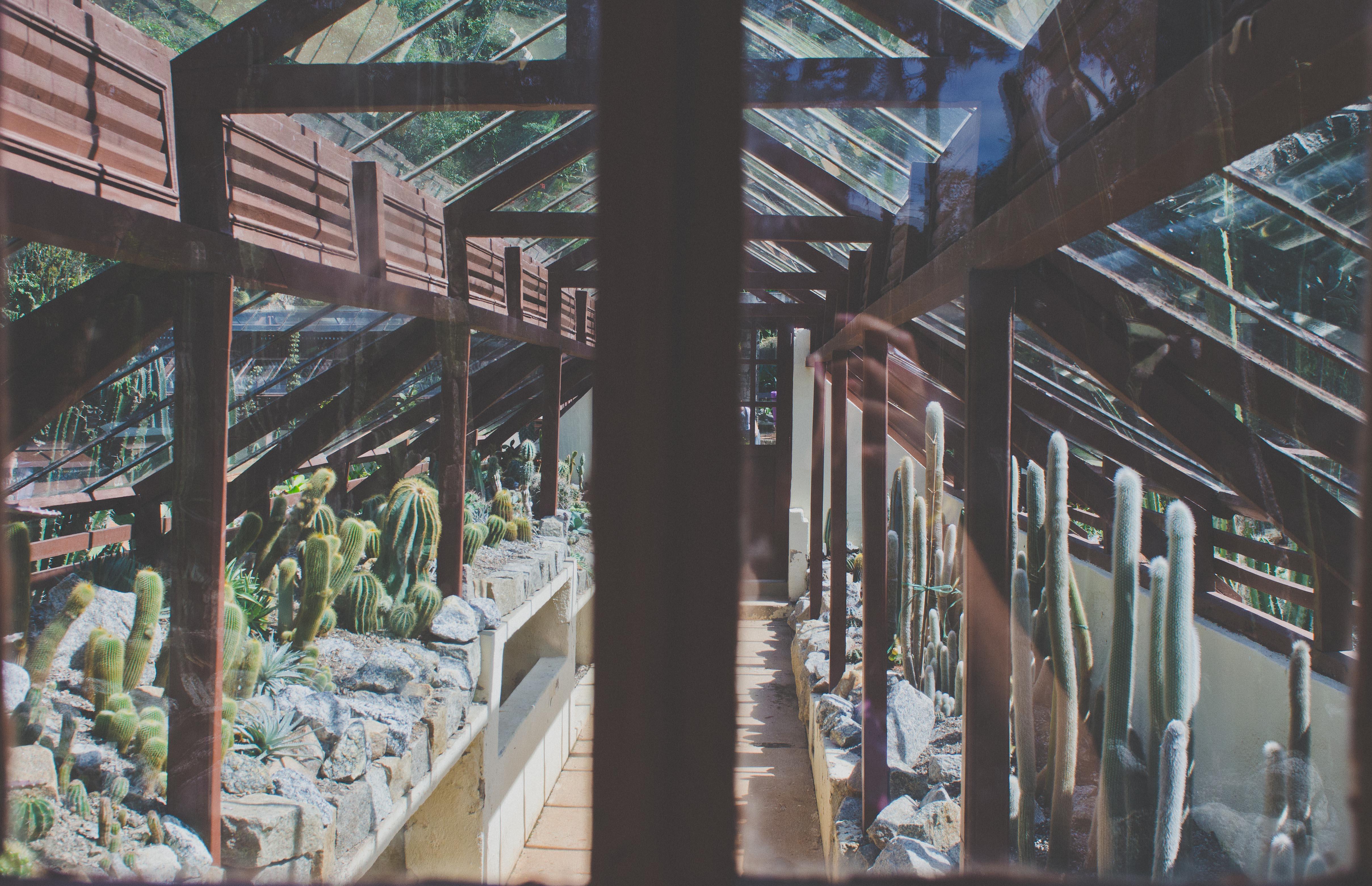 Jardim Botânico do RJ