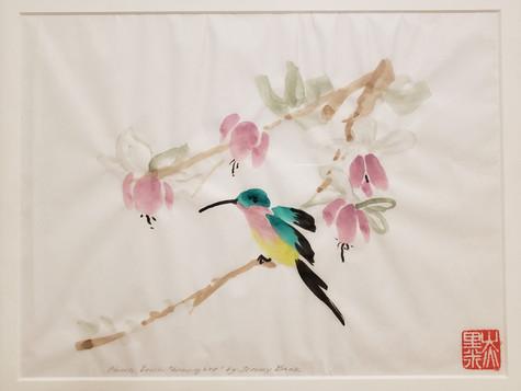 hummingbird jb.jpg