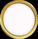 Cyber Vizor - Gold Support Level