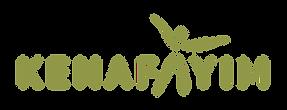 kenafayim eng logo green.png