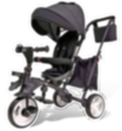 trike mini for website.png