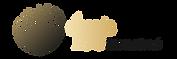 logo_duns_international-01.png