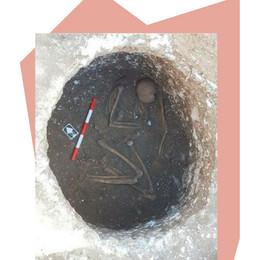 Archaeological Dig Ends