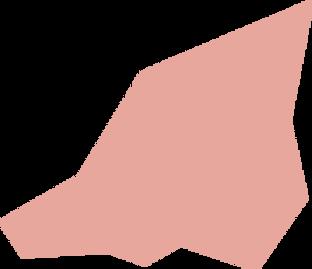 Shape-38 Pink.png