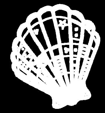 Mermaid Shell