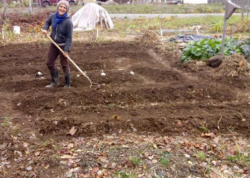 travaux automne au jardin