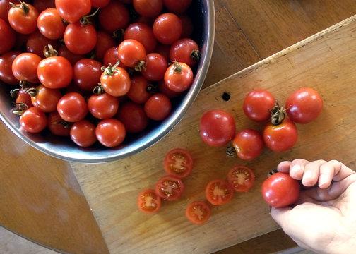 Tomate GARDENER'S DELIGHT