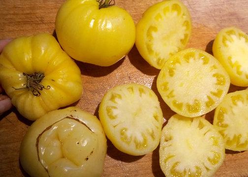 Tomate BYCHYE SERDTSE BELOYE