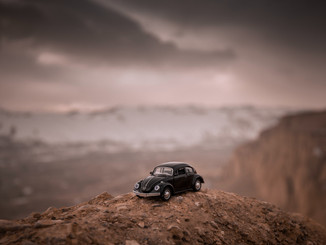 Automotive Rally Specialist