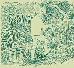 Inside drawing: Joel in the garden