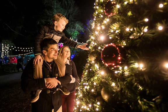 Christmas-in-Kerry-4_master.jpg