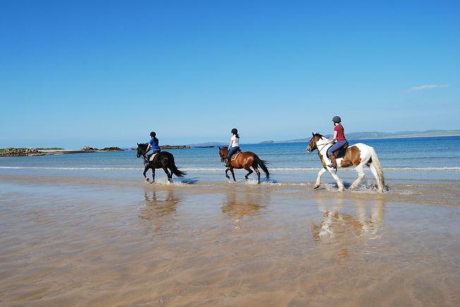 HorseRiding on The Wild Atlantic Way - T