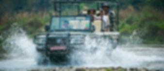 CG jungle safari