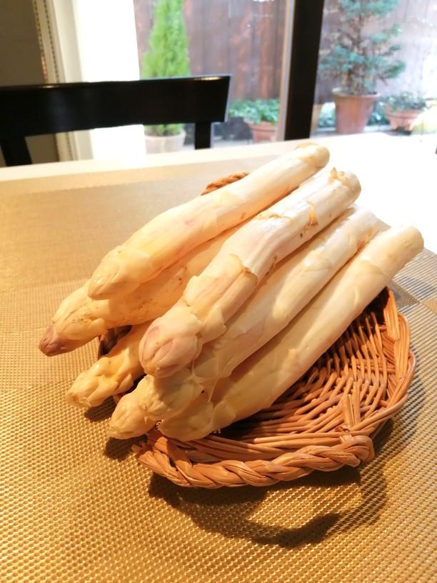 フランス産 極太ホワイトアスパラ