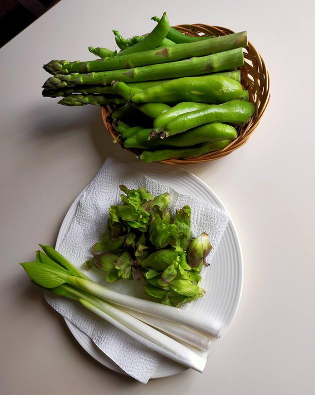 春野菜 山菜たち