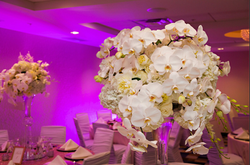Toni + Craig _ Tallahassee Wedding Flowers by At Last Florals _ Flowers _ Florist _ Rentals _ Planne