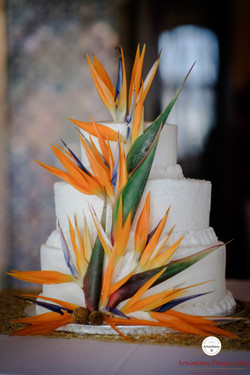 Exotic Cake Flowers | Nicole + Tim